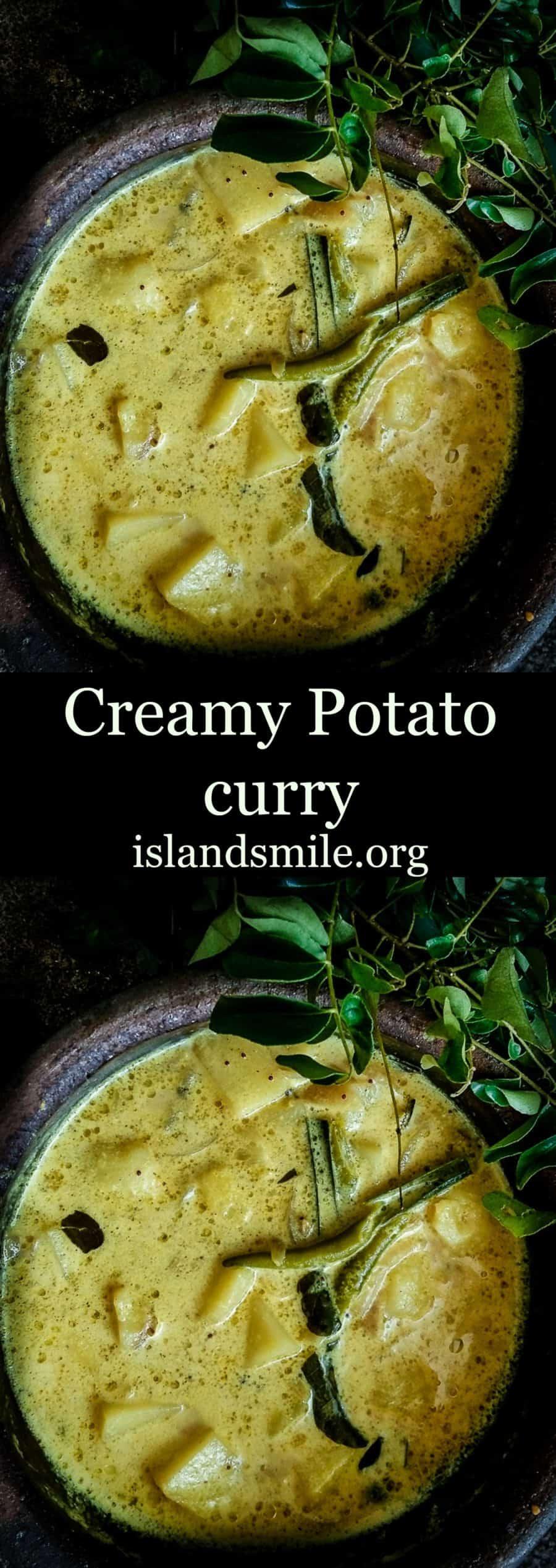 creamy potato curry image
