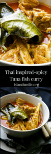 thai inspired-spicy tuna curry in coconut milk-islandsmile.org-