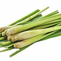 6 Fresh Lemon Grass