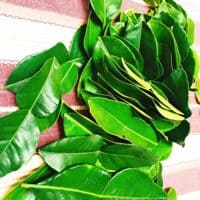 Fresh Kaffir Lime Leaves ( Thai Lime Leaves) 2 Oz.