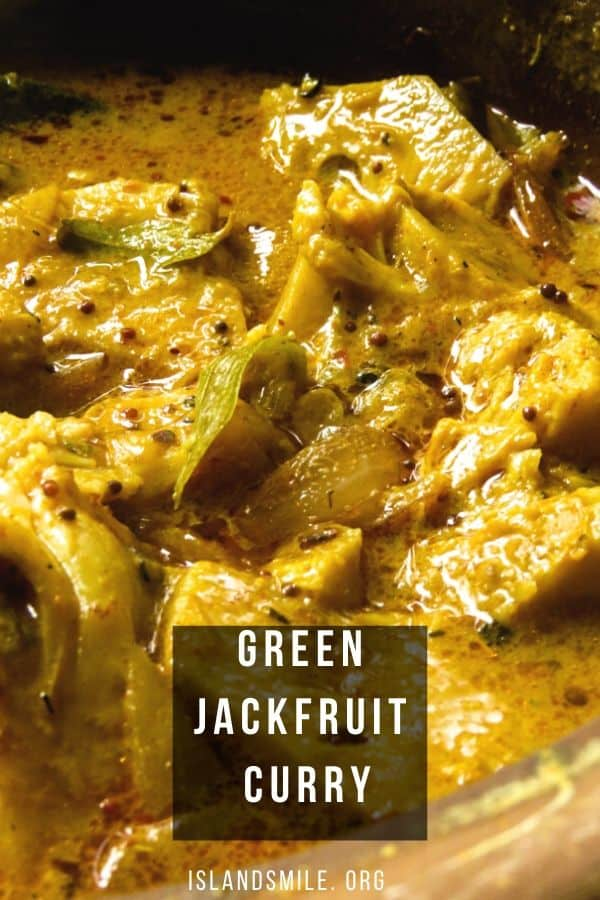 Jackfruit curry(Sri Lankan polos curry)with coconut milk gravy. Make a delicious pot vegan/vegetarian Jackfruit using the correct curry powders and spices to compliment this coconut milk curry dish and you'll know why this Sri Lankan dish is popular.